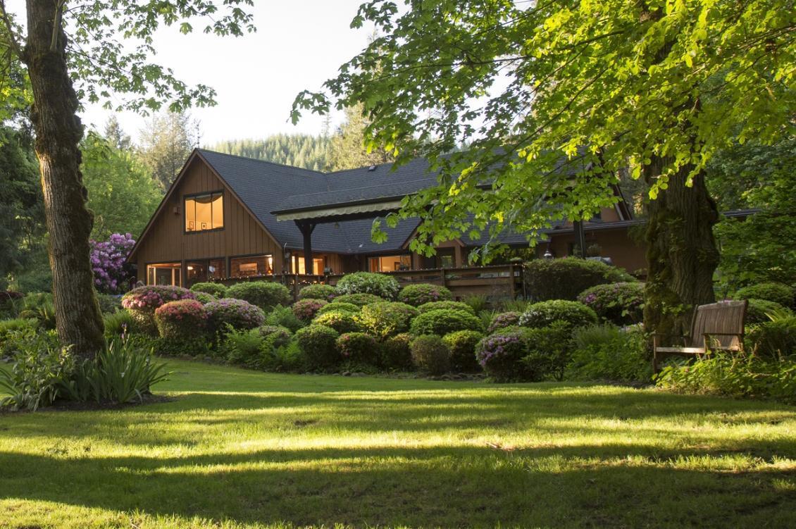 dom w lesie 2